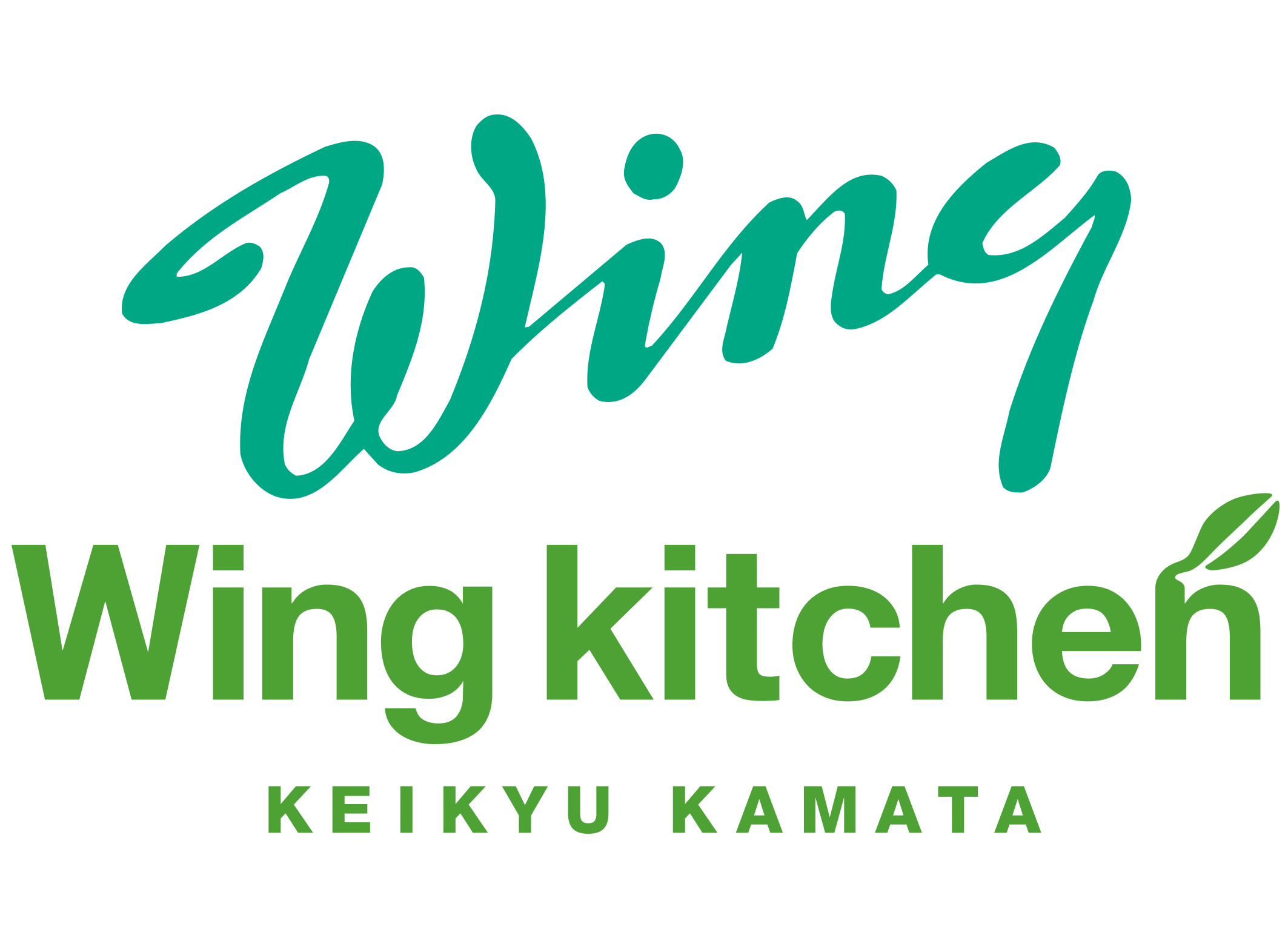 Keikyu Wing airport & kitchen
